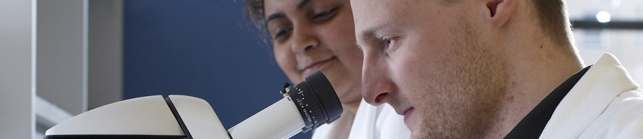 Two students conduct research in a lab at Case Western Reserve University.