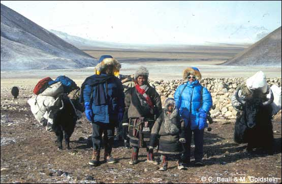 research essay on tibet From steve lehman, the tibetans: struggle to survive, umbrage editions, new   a report by beijing's economic system research institute found that 900,000 .