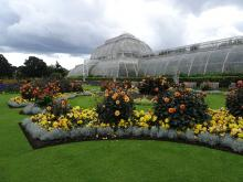 A photo of London's Kew Gardens, part of the Royal Botanical Gardens