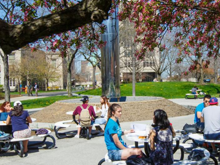 CWRU students sitting outdoors on campus