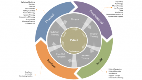 Graphic of the Supportive and Integrative Oncology Program