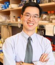 Alex Huang, MD, PhD