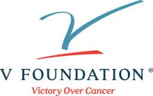 Logo for the V Foundation