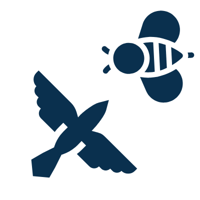 Icon of a bird and a bee