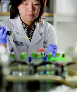 Photo of Chao-Pin Hsiao conducting research work in a lab.