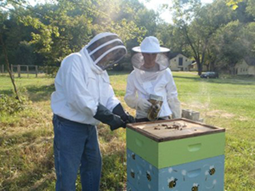 CWRU Faculty and student in beekeeping gear working on a beehive