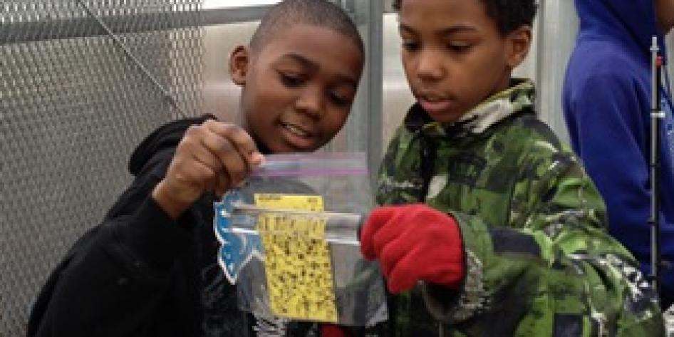 Two young students looking at nature samples at CWRU Farm