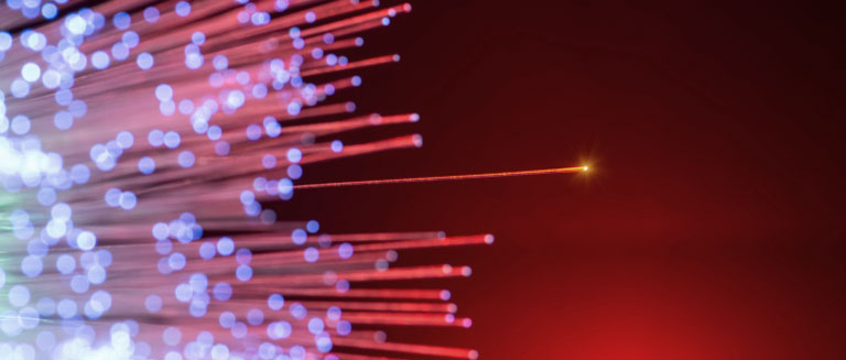 Photo of fiber optic