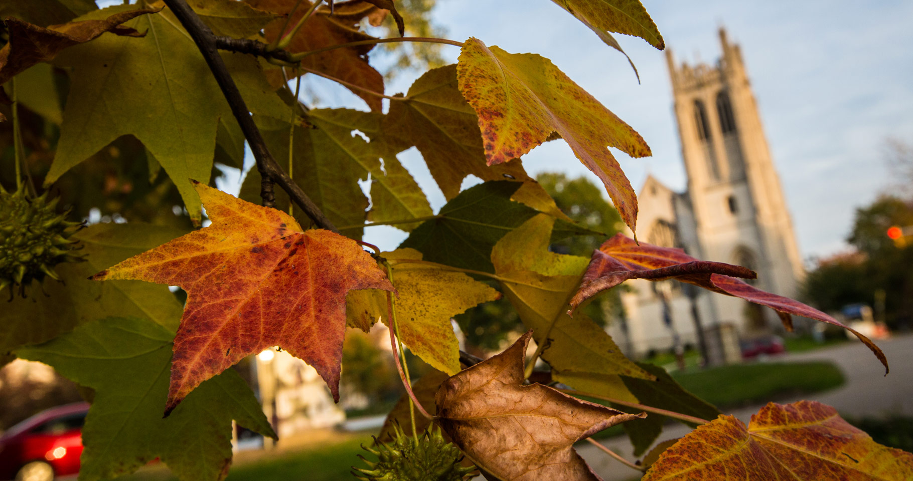 Photo of leaves in fall colors handing on a tree with Amasa Stone Chapel out of focus in the background