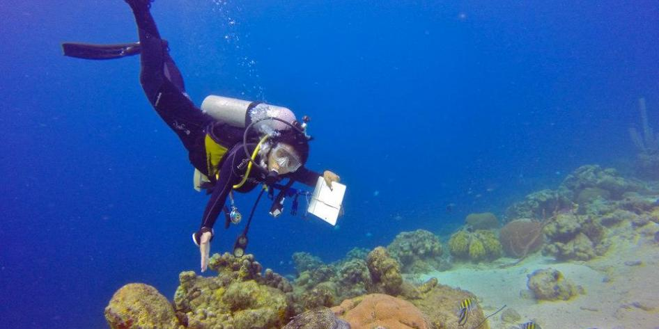 Study Abroad student SCUBA test underwater