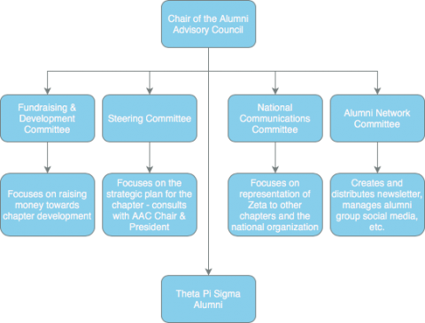 Graphic of council structure, starting with chair, then to the committees and explanations of each committee. The chair then connects to the alumni