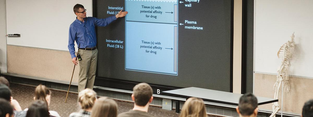 Male teacher standing in front of classroom pointing to slide on screen