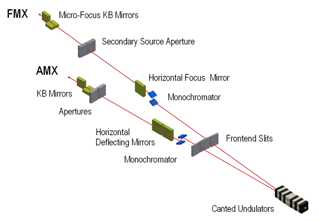 Depiction of apparatus for FMX and AMX beamlines.