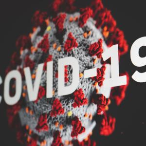 Image of the COVID-19 coronavirus by Martin Sanchez on Unsplash