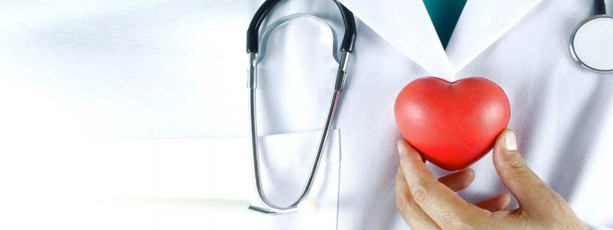 Image of upper torso of doctor in white lab coat with green shirt, with a stethescope around the neck, holding a red heart shaped squeezable stress relieving aid to the chest