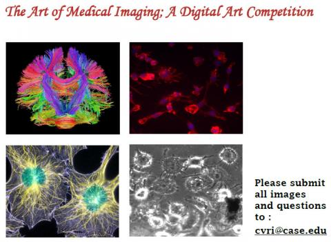 Poster for the art of medical imaging, a digital art competition, with four works of art, the first an image of the vascular pathway of the brain lit up in many multicolors, the second a red and purple stain of cells, a third an image of two cells, with intracell pathways in yellow and nucleus in green, and fourth a black and white image of cells.  contains text please submit all images and questions to cvri@case.edu, with email underlined