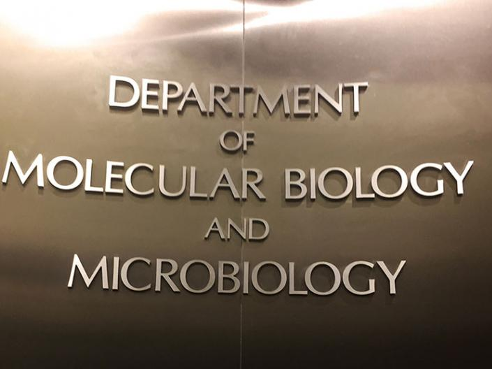 Sign of Department of Molecular Biology and Microbiology on the wall