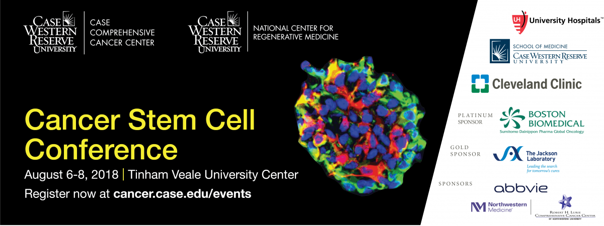 Cancer stem cell conference poster.
