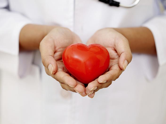 Image of midline view of medical professional with white lab coat and stethescope holding a red heart in his or her hands