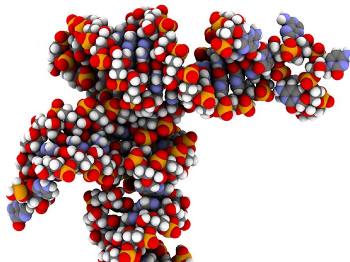 Image of protien molecular arrangement using a space filling model with blue, red, white and orange colors to differentiation