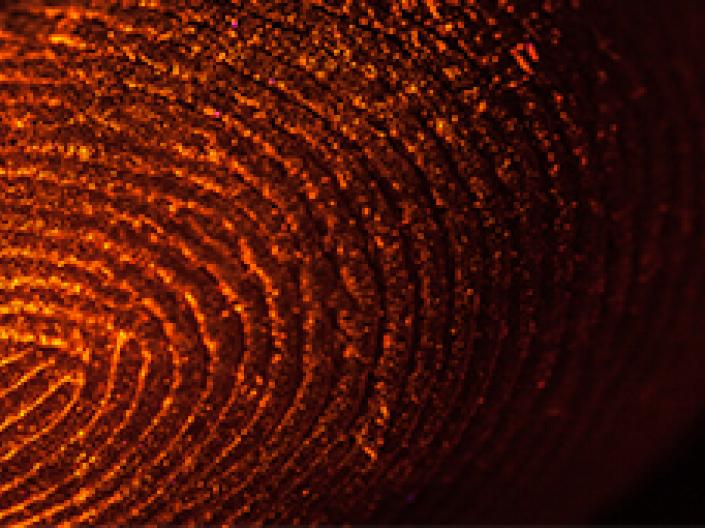 Image of a fingerprint.