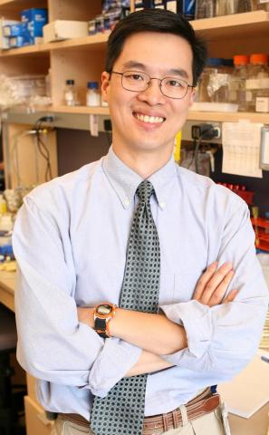 image of Alex Huang