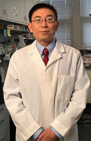 image of Wenquan Zou, MD, PhD