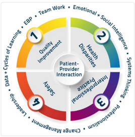 Wheel graph depicting qualities that lead to positive patient provider interaction.
