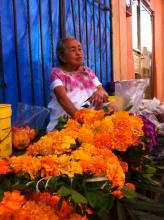 Older woman sitting behind large display of bright orange flowers