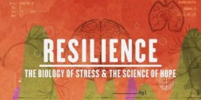 Image of movie poster of Resilience, the biology of stress & the science of hope, with text in white against an orange background, with four green hills, with two purple hills behind them, and lightly drawn images of a human brain and lungs in background