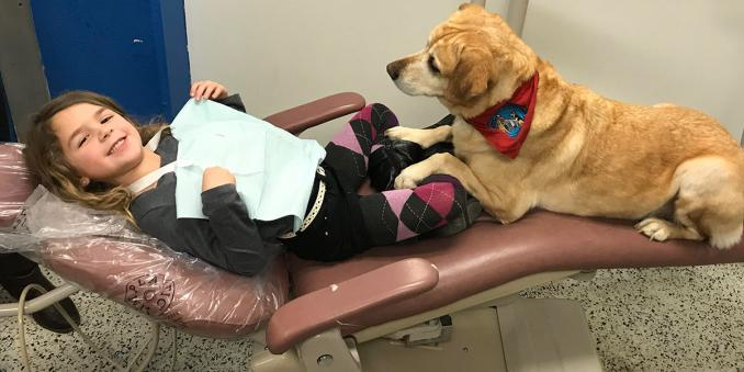 Child lies in dentist chair with therapy dog watching