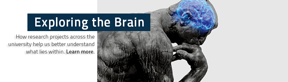 Exploring the Brain How research projects across the university help us better understand what lies within. Learn more.