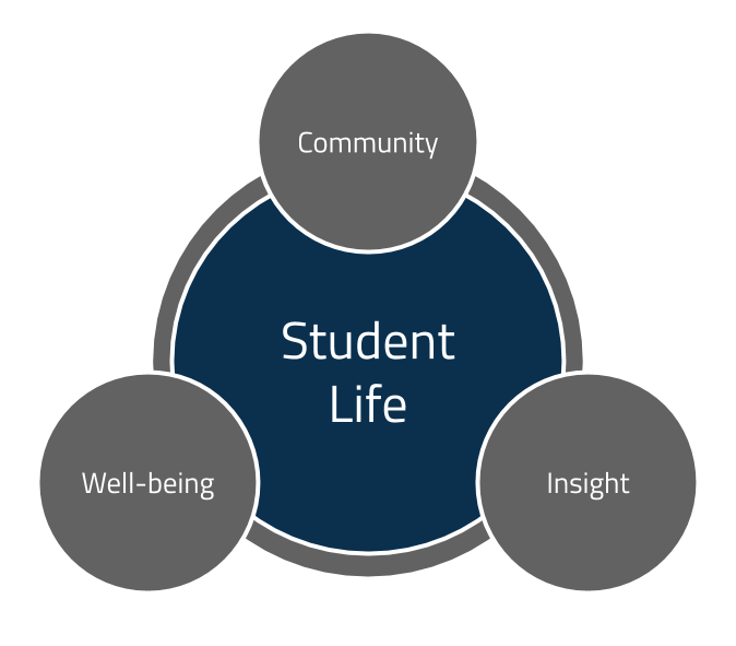 Diagram showing our core values (community, well-being, and insight) surrounding student life