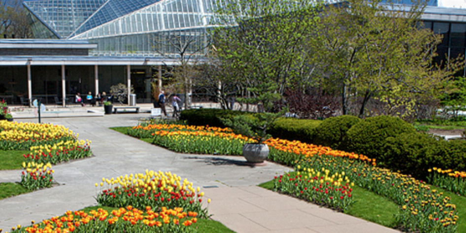 Garden at Cleveland Botanical Gardens