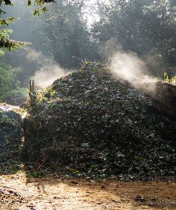 image of a compost heap