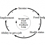 Causal Loop Diagram for Nutritious Food Access