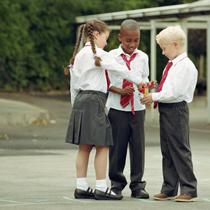 Curbing School Violence