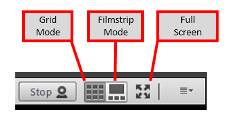 Adobe Connect Video Buttons