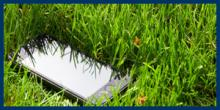 smart phone lying in high grass